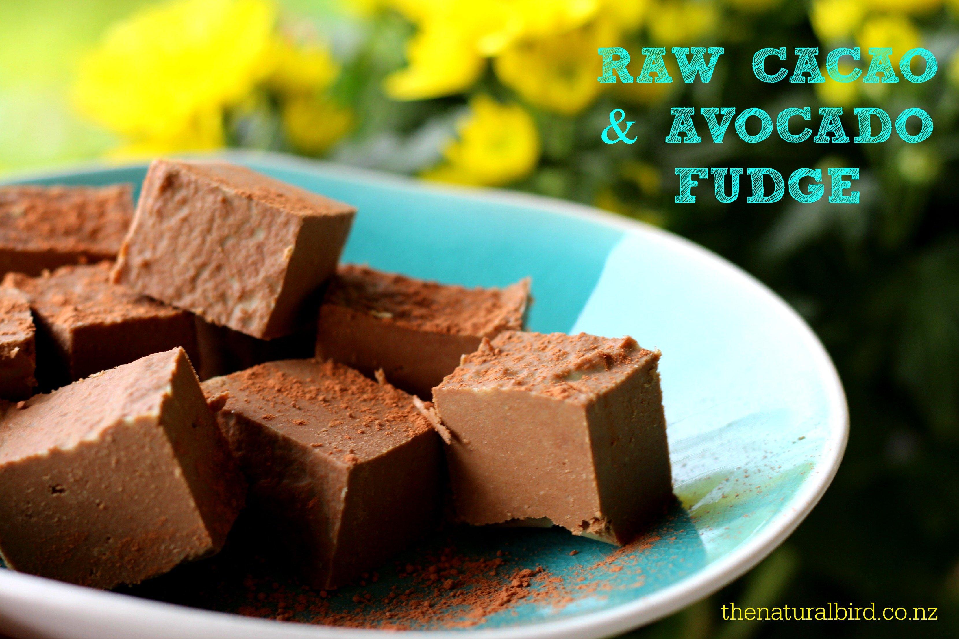 Raw Cacao & Avocado Fudge Recipe