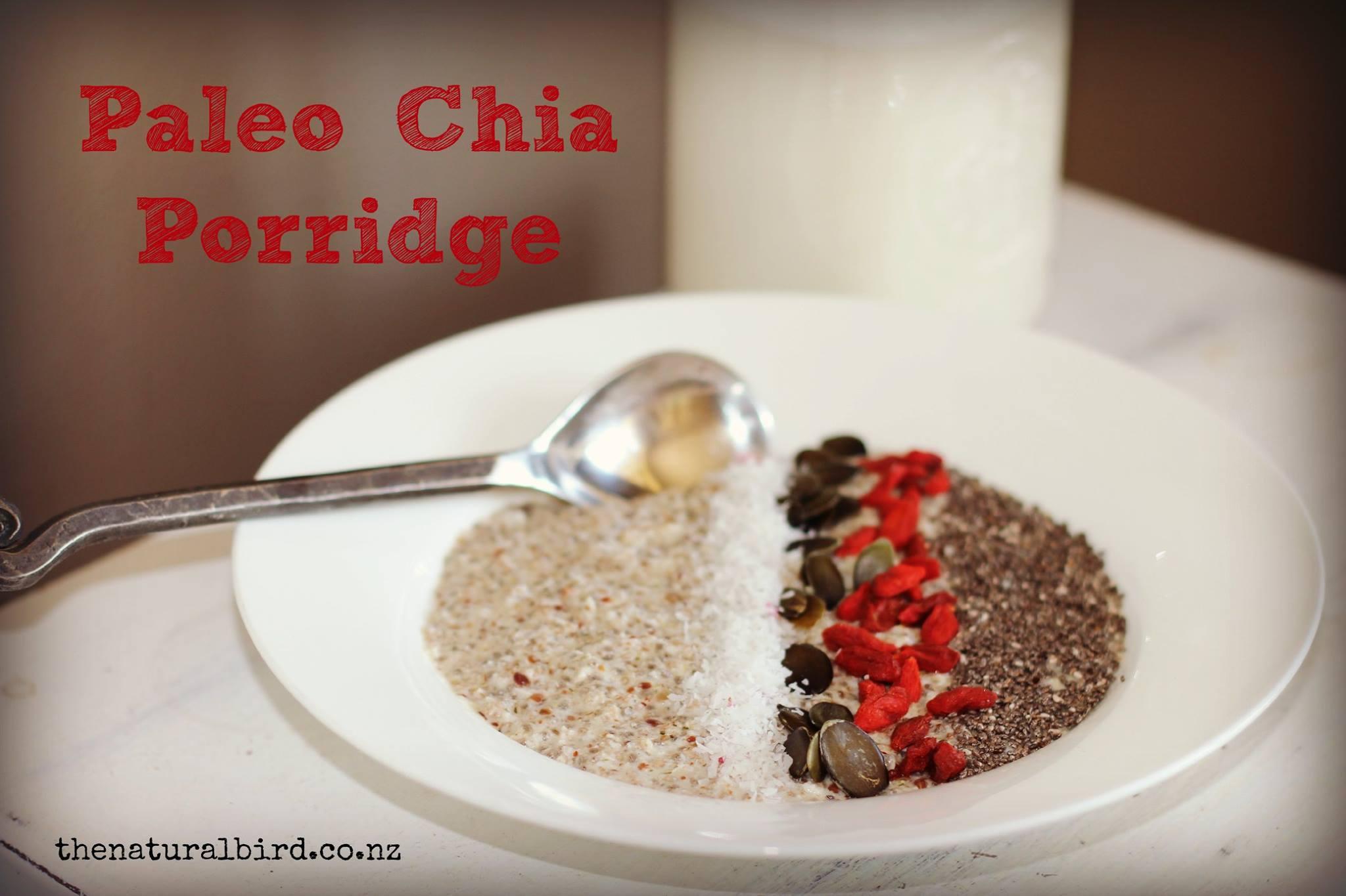 Chia Seed Paleo Porridge