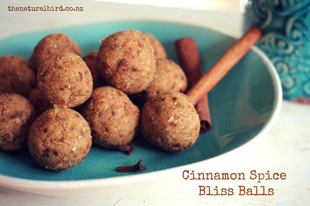 Cinnamon Spice & All Things Nice Bliss Balls