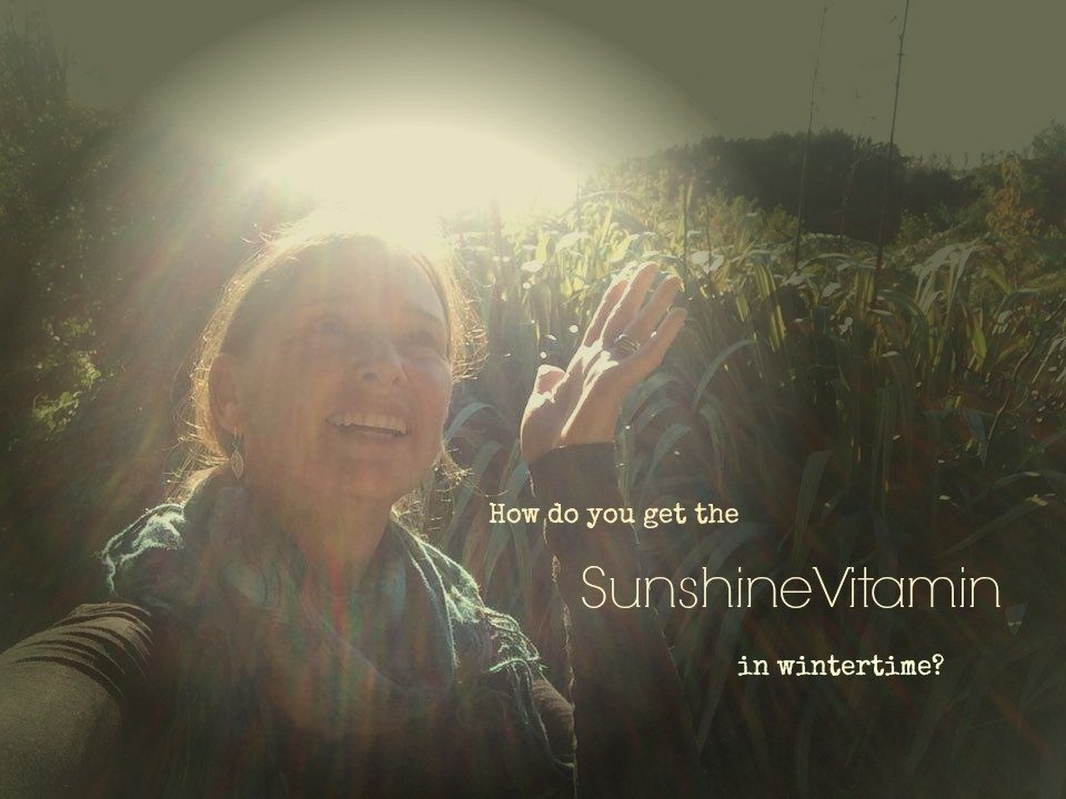 Vitamin D and Cancer – Do you have enough?